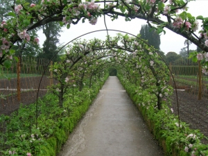 Permaculture Design Ireland | Garden Design Ideas, Kerry ...